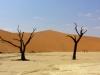 Bigtrip-Afrika-2012-19