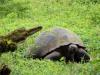 Bigtrip-Galapagos-2012-01