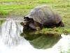 Bigtrip-Galapagos-2012-03