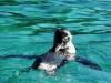 Bigtrip-Galapagos-2012-14
