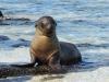 Bigtrip-Galapagos-2012-17