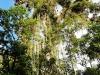 Bigtrip-Panama-2012-02