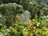 Bigtrip-Panama-2012-04
